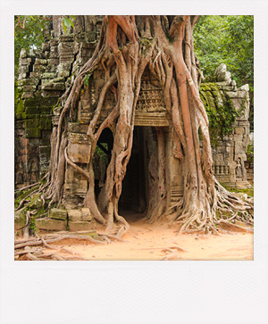 Le temple Ta Prohm au Cambodge.