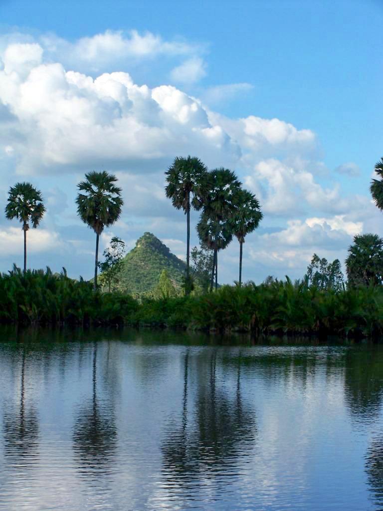 Paysage cambodgien